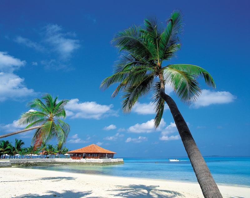 Carabbean Travel Deals St Kitts